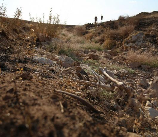 New Mass Grave Unearthed in Iraq's North