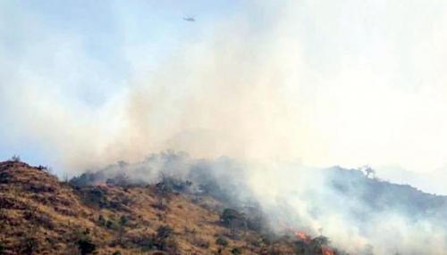 Saudi Civil Defense Keep Up Efforts to Put Out Amad Mountain Fire