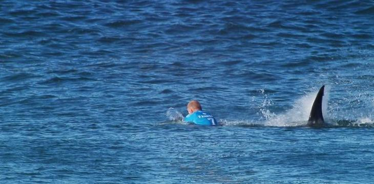Teenage Surfer Killed by Shark in Australia
