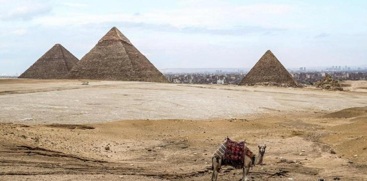 Egypt Invites Musk after 'Aliens Built Pyramids' Tweet
