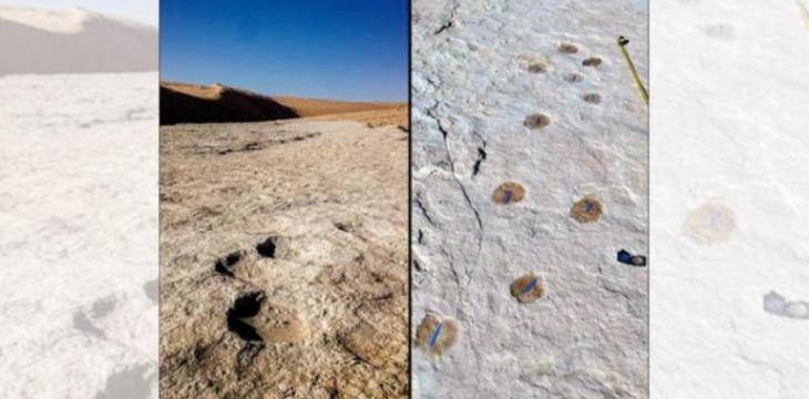 120,000-Year-Old Footprints Found in North-West Saudi Arabia