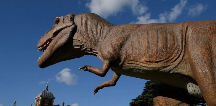 New 'Eternal Sleeper' Dinosaur Unearthed in China