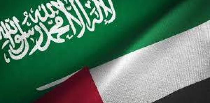 UAE Renews Support for Saudi After Dismantling IRGC-Linked Terrorist Cell