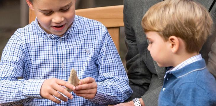 Keep Shark Tooth, Malta Tells Britain's Prince George