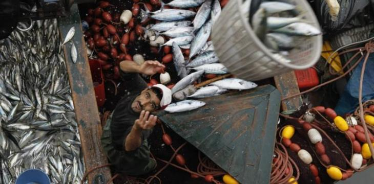 Morocco, Russia Sign New Fisheries Cooperation Agreement