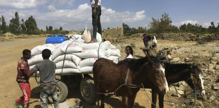 'Extreme Urgent Need': Starvation Haunts Ethiopia's Tigray