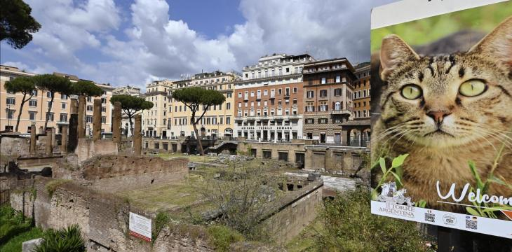 Site Where Julius Caesar was Assassinated to Open for Public in 2022