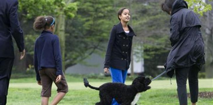 Obama Family Dog BO, a 'Constant, Gentle Presence', Dies